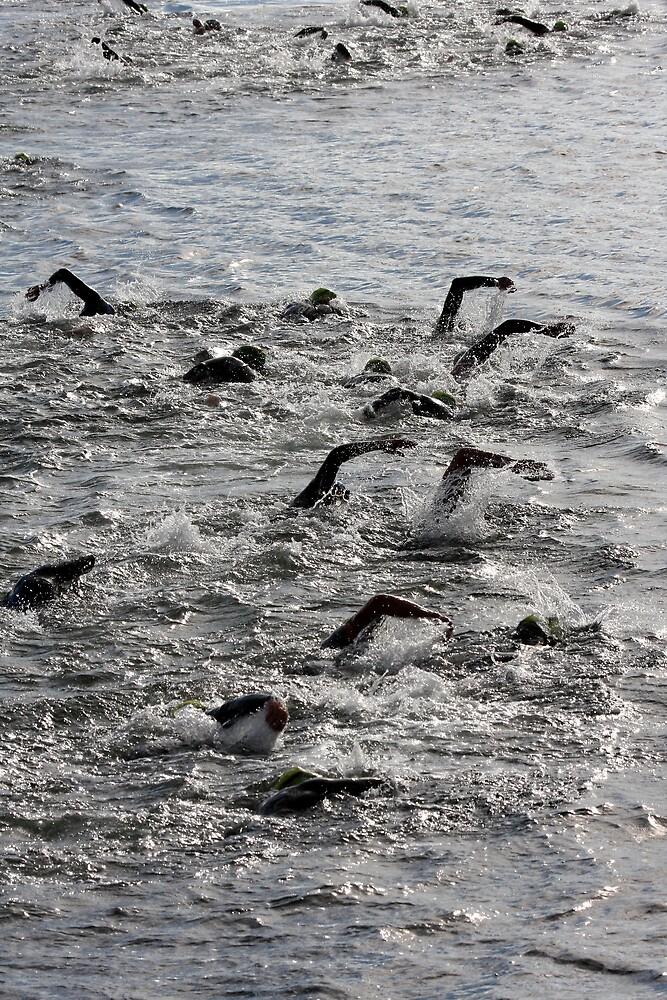 Swim this way by fotosports
