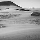 Namib Dunes by Brendan Buckley