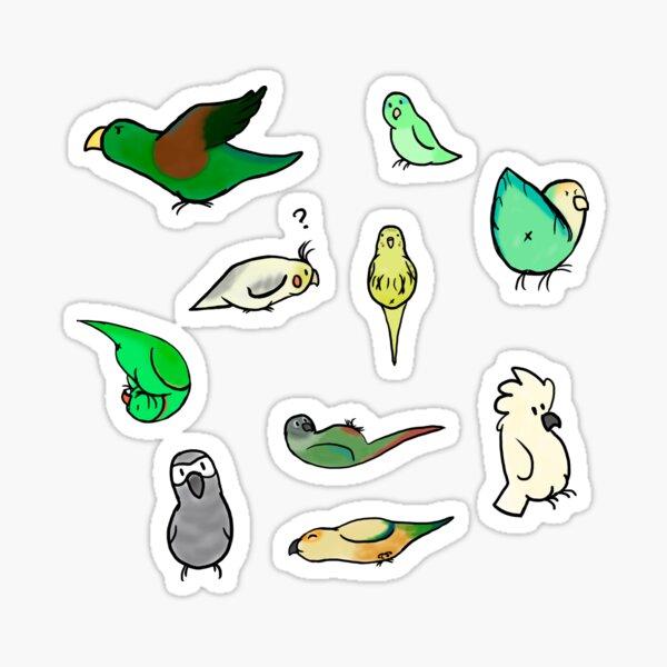 Birbs stickers  Sticker