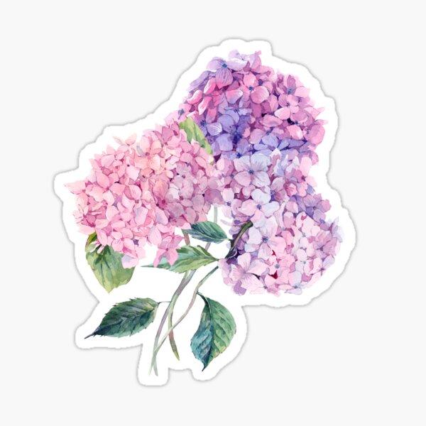 Watercolor branch of blooming hydrangeas Sticker