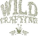 Wildcrafting, Wildcraft, Foraging, Herbalist, Herbalism,  Primitive Skills, Survival Skills, Botany, Botanical by Leah McNeir