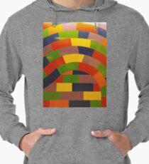 Colorfulness, New York, Manhattan, Brooklyn, New York City, architecture, street, building, tree, car,   Lightweight Hoodie