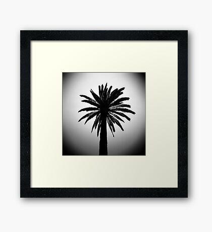 Palma Framed Print
