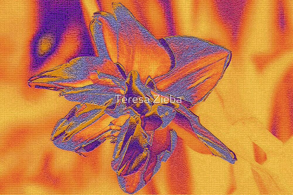 Making Colours Sing by Teresa Zieba