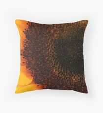Partial Eclipse Throw Pillow