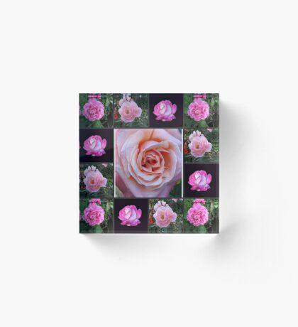 Rosa Rosen-Collage Acrylblock