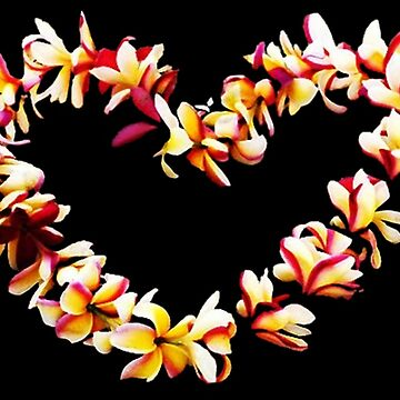 PLUMERIA LOVE by kjgordon