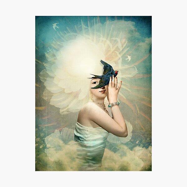 The Sun. Photographic Print