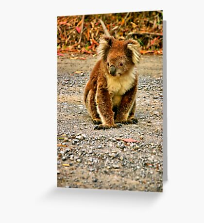 """""""A Weary Traveler"""" Greeting Card"""
