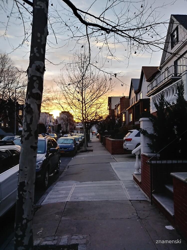 New York, Manhattan, Brooklyn, New York City, architecture, street, building, tree, car,   by znamenski