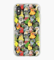 Colour of Conures iPhone Case