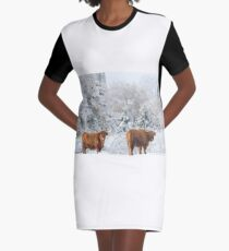 Highland Cattle in winter Graphic T-Shirt Dress