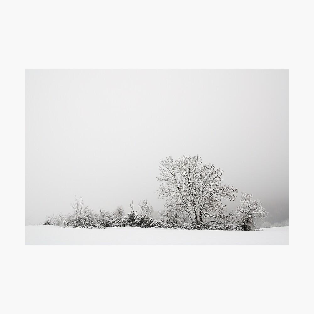 White landscape Photographic Print