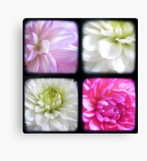 Dahlias Through The Viewfinder (TTV) Canvas Print