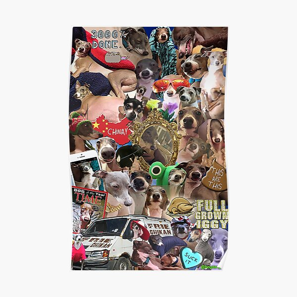 Jenna Marbles Kermit Collage Poster