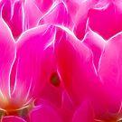 Rose Profusion by Nancy Barrett