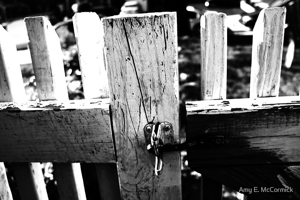 Gate by Amy E. McCormick