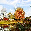 Farm by Pond in Autumn by Susan Savad