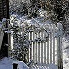Winters Gate by Karen  Betts