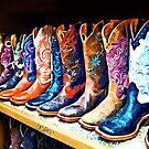 Cowboy Boots by Susan Savad
