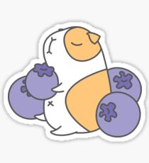 Guinea pig and blueberry  Sticker