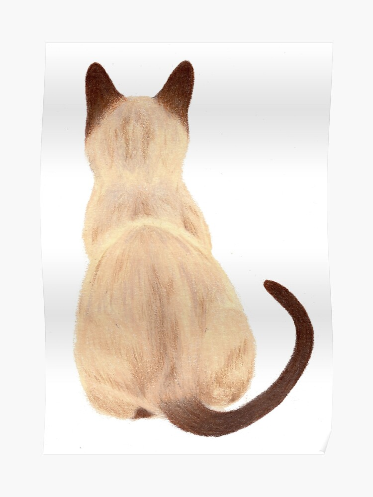 Siamese Cat Sitting Back View | Poster