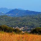 Nature's Palette. Island of Corfu, Greece by Igor Pozdnyakov