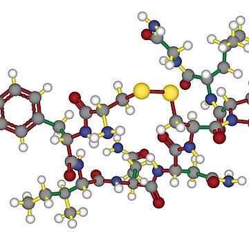 Oxytocin - 3D by codyjoseph