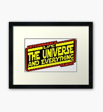 Hitchhiker's Guide Strikes Back Framed Print