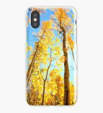 Santa Fe Aspens iPhone Case
