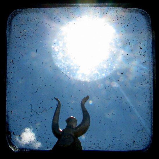 Solar by Kitsmumma