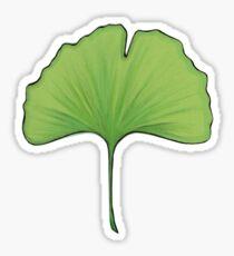 Ginkgo Sticker