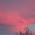 Red sky at nite.. by Highlyamused