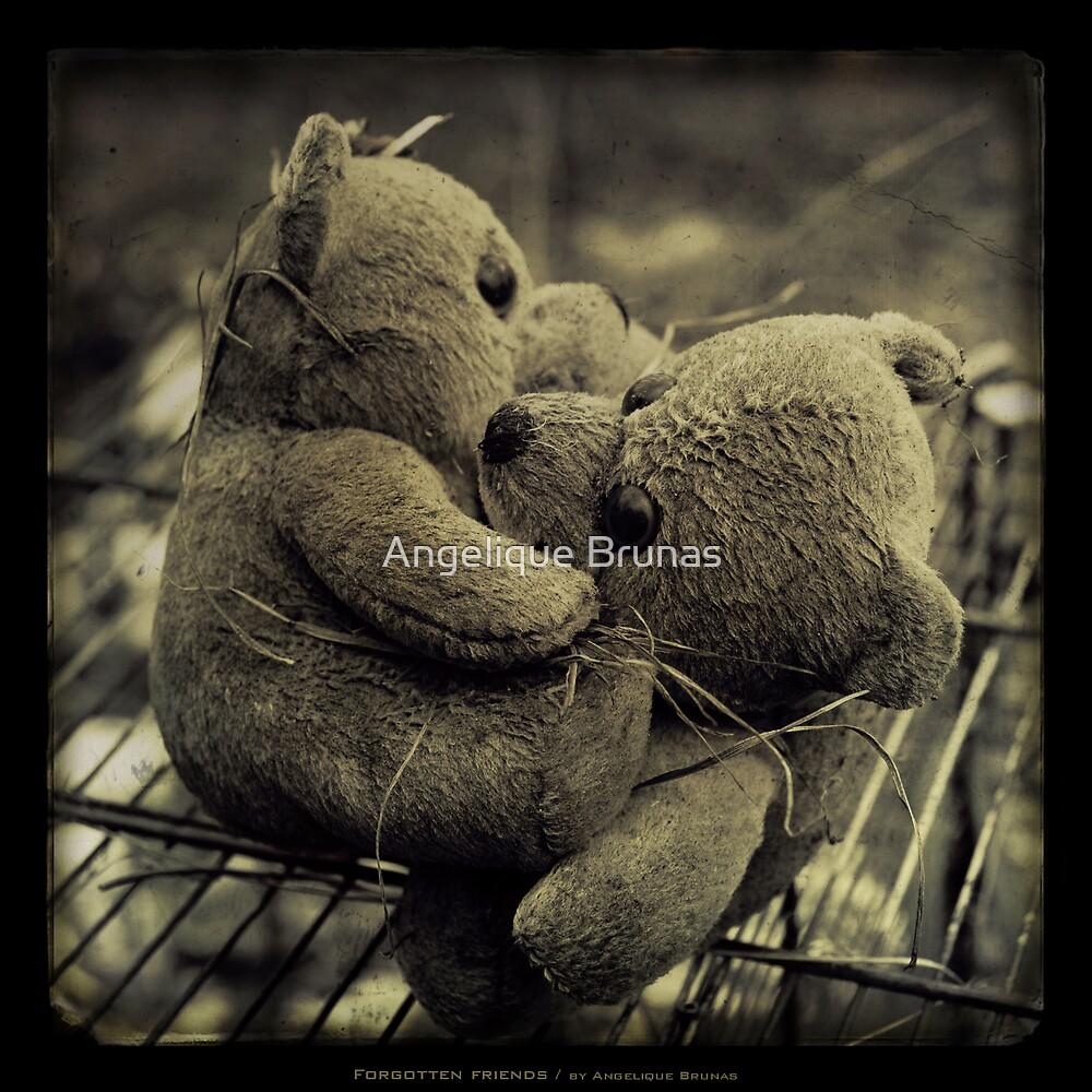 Forgotten friends... by Angelique Brunas