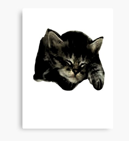 Cats and kittens Canvas Print