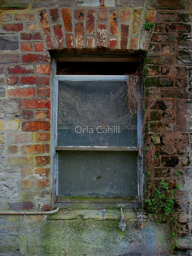 Old Sash by Orla Cahill