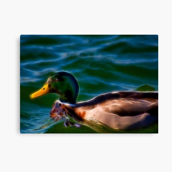 Fancy Duck Canvas Print