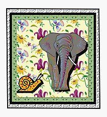 Elephant and escargot Photographic Print