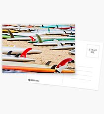 Colorful SUP Boards Postcards
