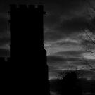 shot on film .. dark tower by badduck09