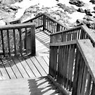 Stairs to the beach by andreisky