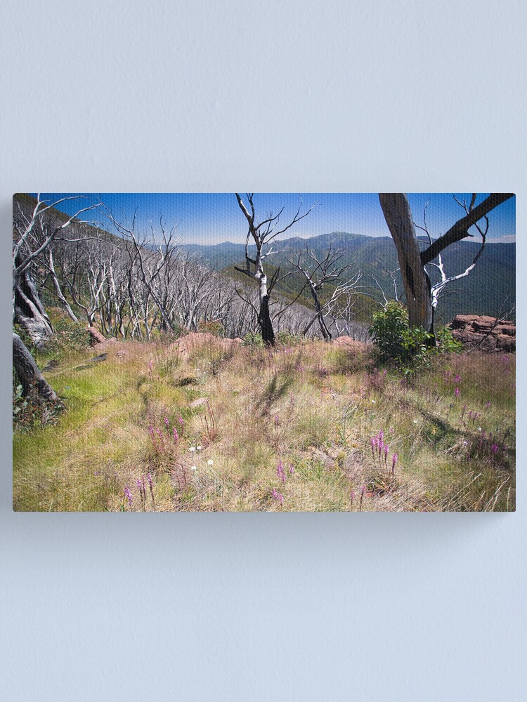 Alternate view of High Country Wild Flowers Canvas Print