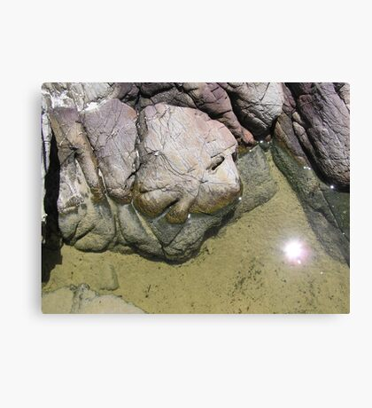 The goblins of the rock pool Canvas Print