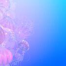 Jelly Fish by Brit Gorlicki