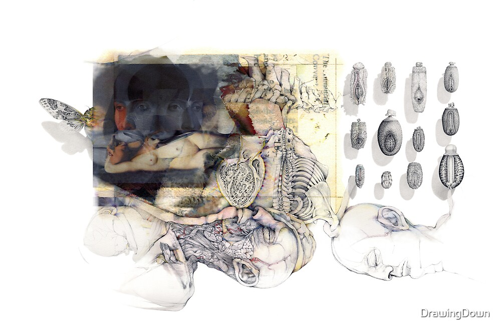 Transformation.  From the series: inside Laboratory 101.  by DrawingDown