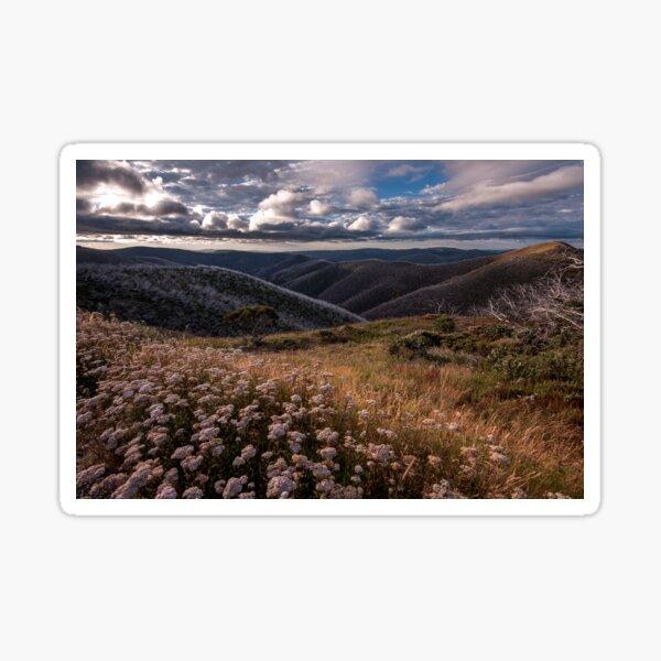Mountain Wildflowers Sticker