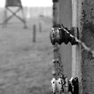 fence by Wesley O'Brien