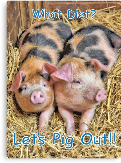 Let's Pig Out!! by Catherine Hamilton-Veal  ©