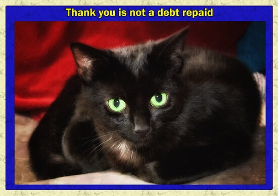 Thank you is not a debt repaid by AntSmith