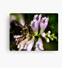 Dont Worry BEE Happy Canvas Print